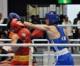 〈インターハイ・ボクシング〉大阪朝高・李健太選手が決勝進出、2冠に王手